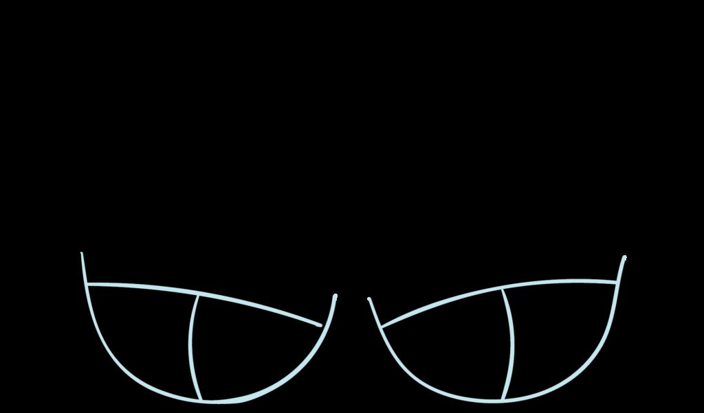 Illustration of a balconette/half cup bra