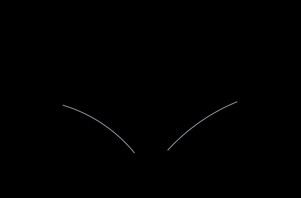 Illustration of a mastectomy bra